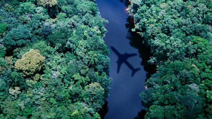 Aircraft over forest